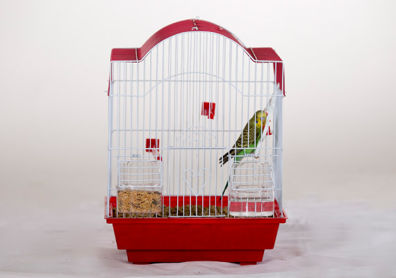 straw litter for house pets